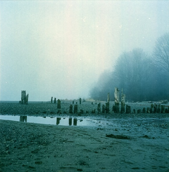 Yashica Mat-124G film image foggy day and the beach